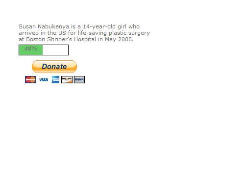 PayPal Donate Script