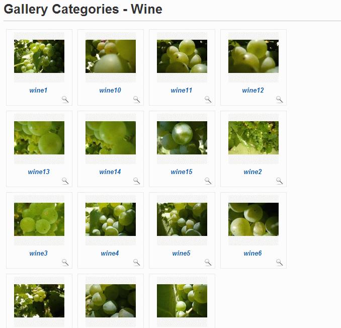 Phoca Gallery with Slideshow
