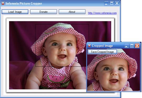 Picture Cropper