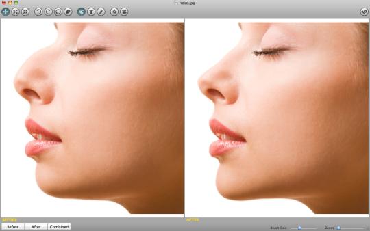 Plastic Surgery Simulator (Mac)