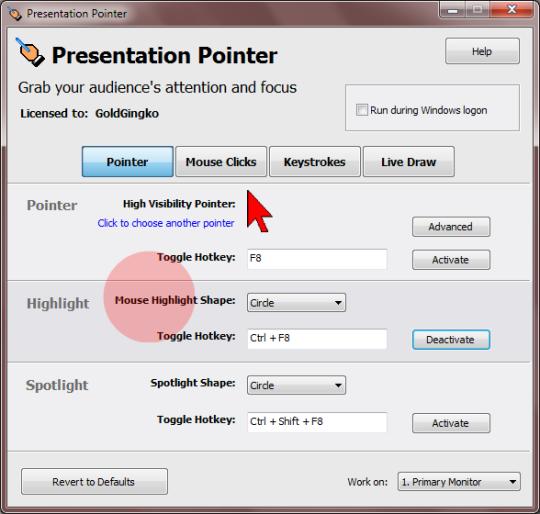 Presentation Pointer Portable