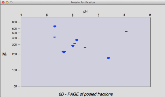 protein-purification_4_15135.png