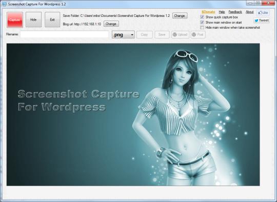 Screenshot Capture For Wordpress