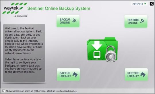 Sentinel Online Backup System