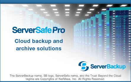 ServerSafe Pro