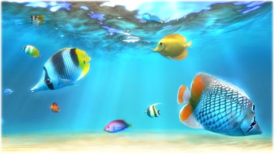 sim-aquarium-free_1_1705.jpg
