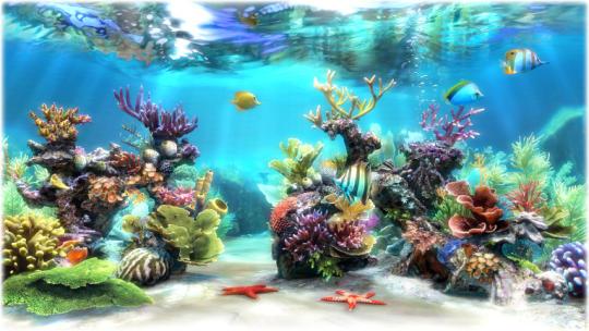 Sim Aquarium