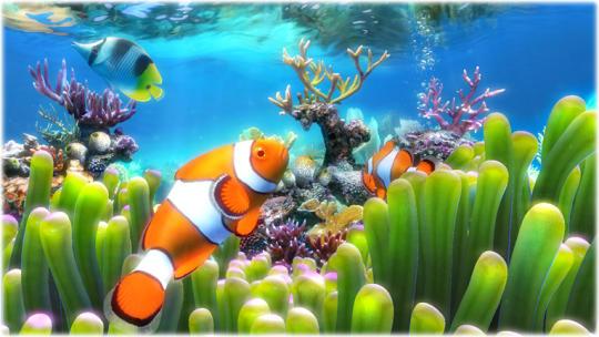 sim-aquarium_2_1790.jpg
