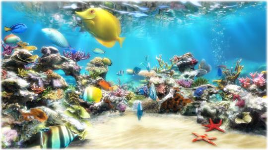 sim-aquarium_4_1790.jpg