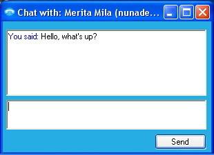 Skype Lite Client