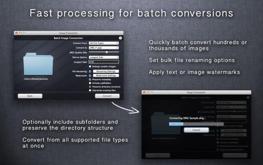 snap-converter_1_16709.jpg