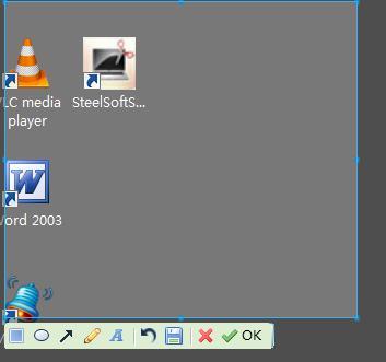 SteelSoftScreenShot