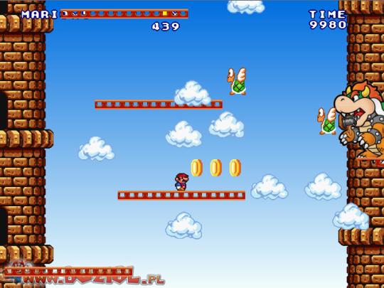 Super Mario Castle 2