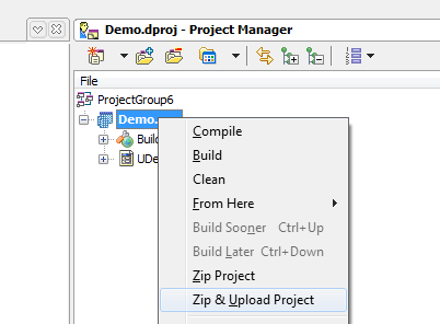TMS Project Manager (Delphi 2010)