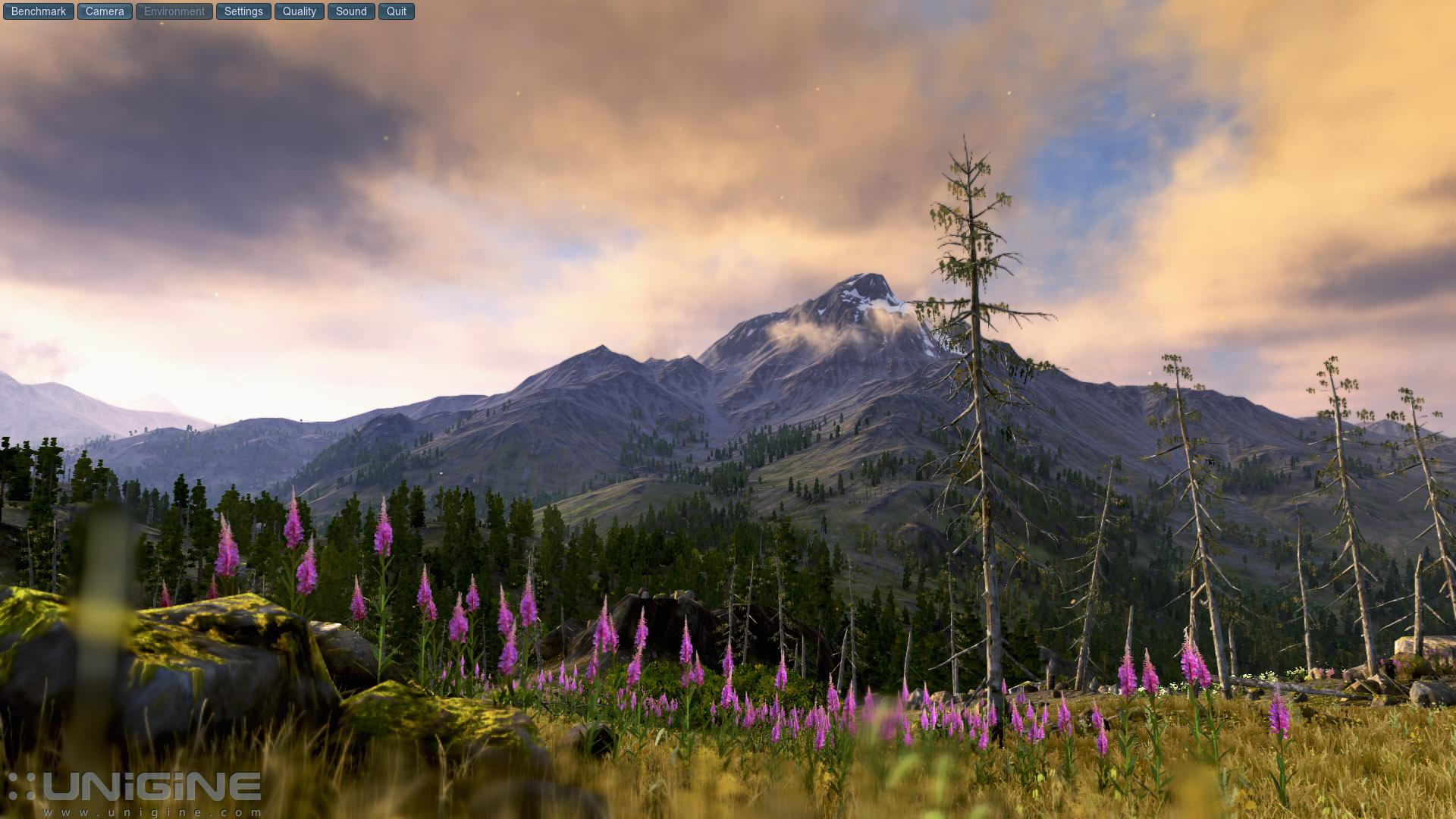 valley-benchmark-75010_3_75010.jpg
