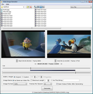 Video Image Generator