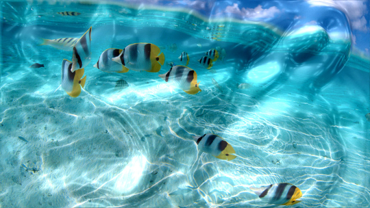 Watery Desktop 3D Animated Wallpaper & Screensaver