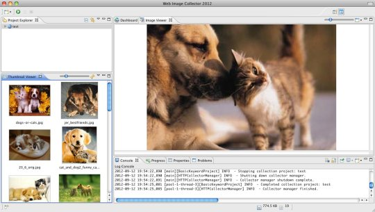 Web Image Collector 2013