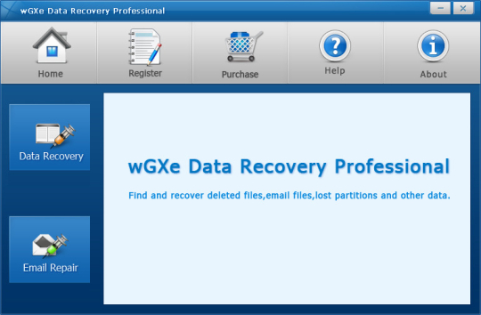 wGXe Data Recovery Professional