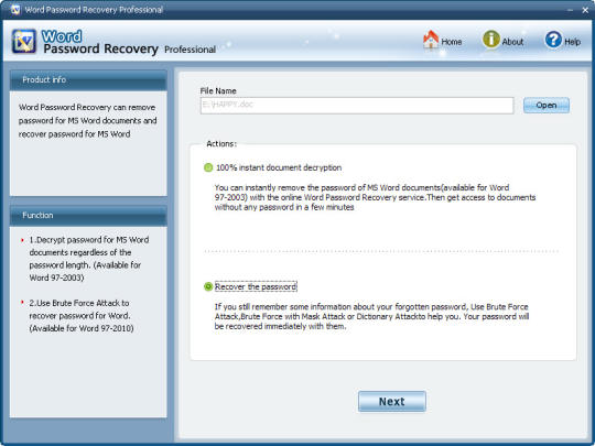 Word Password Recovery Standard