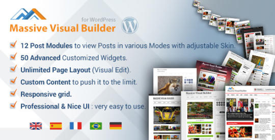 wp-massive-visual-website-builder_1_6011.jpg