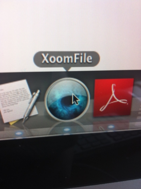 XoomFile