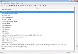 XWall for Windows 2000 (32-bit)
